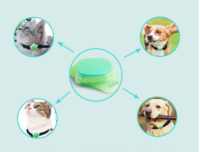 giải pháp định vị chó mèo